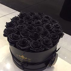 Find images and videos about black, flowers and rose on We Heart It - the app to get lost in what you love. Black Like Me, Shades Of Black, Black Love, Black Is Beautiful, Black And White, Color Black, All Black Everything, Catty Noir, Carla Brown