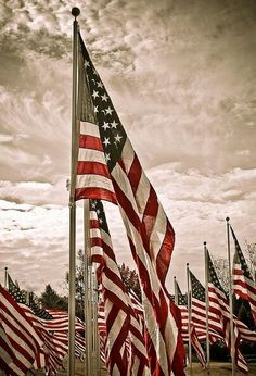 761a9d4f411 26 Best America the Beautiful images