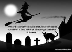 Halloween idézetek Halloween, Movies, Movie Posters, Films, Film Poster, Cinema, Movie, Film, Movie Quotes
