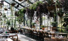 10 bars et restaurants tropicaux autour du monde  The Line, Los Angeles   3515 Wilshire Blvd, Los Angeles, CA 90010, États-Unis, www.thelinehotel.com