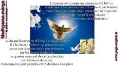 http://observance.over-blog.com/2015/11/le-libre-arbitre.html