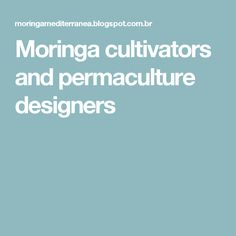 Moringa cultivators and permaculture designers