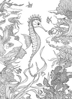 Pen & Ink  -  Conversation with a Fish Commissions welcome!  www.cricketseye.com
