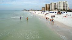 Clearwater, FL's status as one of America's best beaches has lured countless vacationers to its pristine shores.