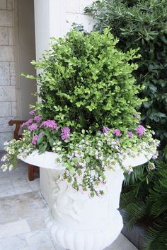 Beautiful boxwood planters, perfect for spring landscaping and outdoor living decor! #bluegraygal #boxwood #outdoorliving