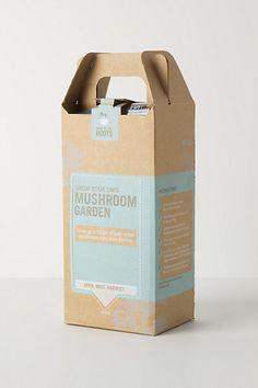 Gourmet Pearl Oyster Mushroom Garden #anthropologie
