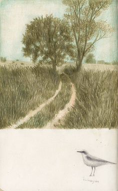 photography and illustration Nature Illustration, Landscape Illustration, Pencil Illustration, Landscape Drawings, Landscape Paintings, Natural Scenery, Color Pencil Art, Sketchbook Inspiration, Whimsical Art