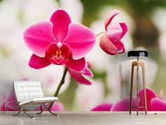 Foto #Tapete Perspektivische Orchideen Gift Wrapping, Gifts, Photos, Self Adhesive Wallpaper, Orchids, Wallpaper, Nice Asses, Pictures, Paper Wrapping