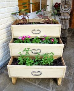 Recycled chest of drawers as a tiered planter box!
