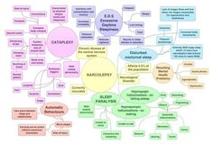 """Narcolepsy - this contains more of my symptoms than any other N-info graphic I've found.  I didn't realize - even after being correctly diagnosed - how many areas of my life altered with this disease. It took a while to shift from """"fix it and move on"""" to """"adjust for and achieve simultaneously"""" but I'm hopeful for the future"""
