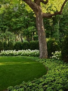Landscaping Ideas – A yard is a place where families and friends get together and should reflect your unique designing ideas and taste. Here are some wonderful ideas from professional landsc… #LandscapingandOutdoorSpaces