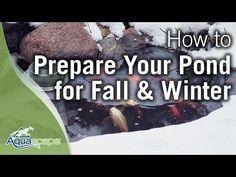 Simple Tips for Fall Pond Care - C.E. Pontz Sons Landscape Contractors