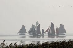 Althäger Fischerregatta 2014: viel Nebel, wenig Wind zum Segeln und ... eine wundervolle Stimmung! #Bodden #Zeesboote #Segeln #RomantikHotel #FischlandDarß