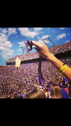 East Carolina University football game #ecu #football #eastcarolina #purpleandgold Ecu Football, Ecu Pirates, East Carolina University, Alma Mater, Attraction, College, Game, My Love, Concert