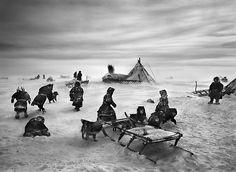 Sebastiao Salgado, Nenets, an indigenous nomadic people, whose main substance from reindeer herding, South Yamal region, Siberia, Russia, 2011, gelatin silver print