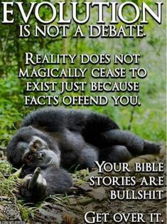 """This is obviously backwards. Also the theory of evolution never offended me just showed me how twisted the """"truth"""" has become."""