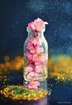 Wake Up by MyLifeThroughTheLens on DeviantArt Magic Bottles, Red Pendants, Fall Is Here, Vintage Bottles, Aesthetic Backgrounds, Flower Images, Pink Wallpaper, Color Splash, Wake Up