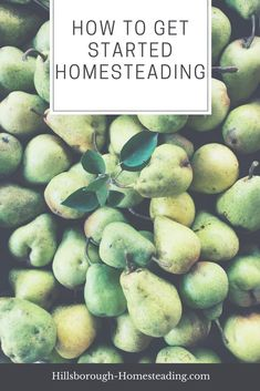 Whether you're homesteading off-grid on 100 acres in the ozarks, or homestead dreaming in a city apartment, there are things we can ALL do to get started homesteading EXACTLY where we are now. Here's a list of easy frugal homesteading ideas anyone can do. | Hillsborough Homesteading