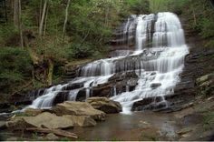 Pearson's Falls in Saluda/Tryon, NC. Love this place, will definitely visit again. pool, famili time, rock, pearson fall, families, place, fall home, hiking, gorgeous pearson