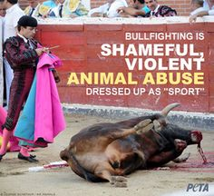 Tortured, prodded by iron spikes, skewered with swords of 80 cm the bull shakes, spits blood and collapses to the ground, in agony. Necrophiles, sadists and cowards call this barbarism culture, if you're not one of them take action now! http://petauk.org/lovespainhatebullfights #bullfight is bullshit #spain