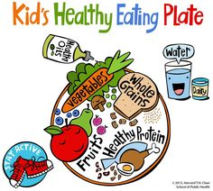 The Kid's Healthy Eating Plate is a visual guide to help educate and encourage children to eat well and keep moving.