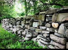 All over the countryside New England and much of the Northeast are some of the loveliest and historical stone walls.  Built by early Americ...
