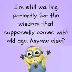 """These """"Top Minion Quotes For DP – Laughing Humor memes and Pictures"""" are especially collected for you.It will make you laugh and funny for whole day. Quotes For Dp, True Quotes, Funny Quotes, Funny Minion Memes, Minions Quotes, Minion Sayings, Minion Humor, Minion Pictures, Funny Thoughts"""