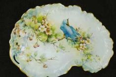 China Painting Study for bluebird and hawthorn on a porcelain platter, by porcelain artist and teacher, Phyllis McElhinney