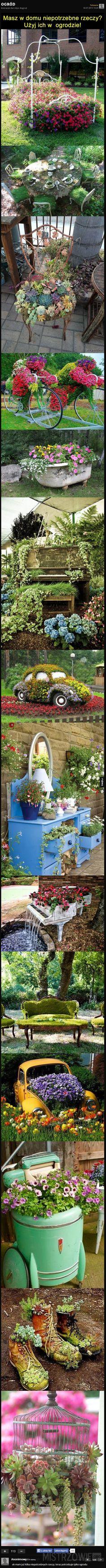 Ogród –