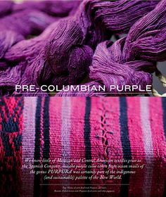 Pre-Columbian purple from the ocean snails of the genus Purpura