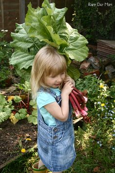 Rhubarb Crumble Recipe - cooking with kids seasonal food straight from the garden