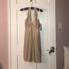 Metallic Gold Party Dress 💃🏻 ZumZum gold halter back party dress! Cute sexy and never worn! Slight A line 💃🏻💃🏻 ZumZum Dresses Mini