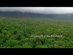 The JCU Daintree Rainforest Observatory, or DRO, is a premier ecological monitoring site located in lowland rainforest around 140km north of Cairns in northern Queensland, Australia.