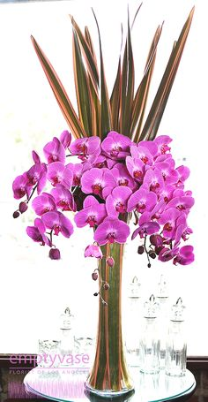 """Blushing Blooms- 60 Blooms of Pink Phalaenopsis Orchids decorated with Flax Leaves are arranged in a 24"""" tall glass vase lined with more Flax Leaves. This arrangement is approx. 48"""" tall."""