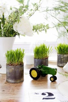 Placing cans of grass throughout the party decor gives the outdoorsy feel expected with the John Deere theme. See more John Deere birthday party ideas at www.one-stop-party-ideas.com