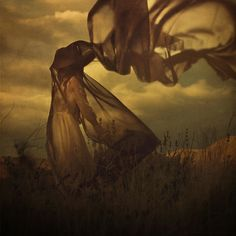 "L.A. based photographer Brooke Shaden. About this image, she says: ""It seems like everyone owns everything and no one wants to let me take pictures on their dirt. So I RAN up the mountain in an effort not to get caught."""