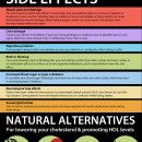 Cholesterol Lowering Statin Drugs Infographic. Please visit my health webpage http://abiiid.com/dxn-ganoderma