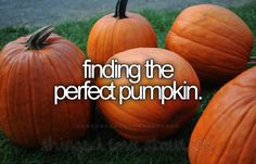 things I love about fall. going to the pumpkin patch with our Grand kids, picking out all our pumpkins, gourds & other goodies. We feed the animals, go on the hayride, drink hot apple cider & get our faces painted! Fall Tumblr, Pumpkin Pictures, Autumn Pictures, Hot Apple Cider, Just Girly Things, Happy Things, Scary Things, Hello Autumn, Autumn Fall