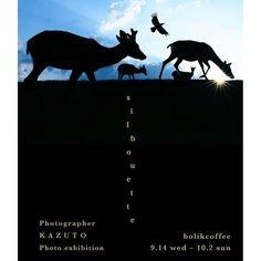 【kazuto.photography】さんのInstagramをピンしています。 《【 K A Z U T O 写 真 展 の お 知 ら せ 】  明日、9月14日(水)~ 10月2日(日)までの期間 奈良町にあるカフェ「 ボリクコーヒー 」さんにて、写真展『 s i l h o u e t t e / シ ル エ ッ ト 』を開催させて頂きます。 ・ 空の色と光がおりなす不思議なシルエット作品をぜひご覧下さい。みなさまよろしくお願い致します。 ・ ※展示期間中【 作 品 &  ポ ス ト カ ー ド 】の販売もおこなっております。 ・ 場 所: b o l i k c o f f e e ・ 期 間:9月14日(水)〜 10月2日(日) ・ http://kanakana.info/bolik-coffee ・ 奈良市西新屋町40-1 ・ OPEN 11:00〜19:00 ・ ※展示期間中の定休日 / 9月 20日 ・ 21日 ・ 26日 ・ 27日 ・ 近鉄奈良駅から徒歩13分 / JR奈良駅から徒歩17分 ・ 天理行きバス 福智院町バス停下車2分 ・ 駐車場 なし…