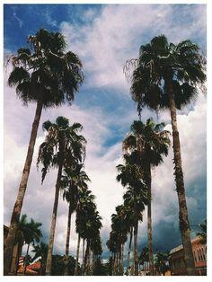 Past, Present, and Future. California Colors, Going To California, California Dreamin', Los Angeles California, San Francisco, Los Angeles Hollywood, Photo Dream, City Of Angels, Dream Machine