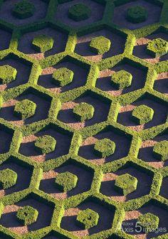 Jardin botanique, Bruxelles