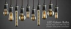 LED Edison Filament Bulbs Collection