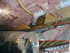 snake in the joists as part of This Old House's Home Inspection Nightmares 30