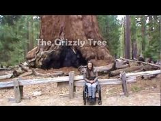 More Yosemite for Wheelchair Travel