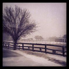 White Christmas in Texas