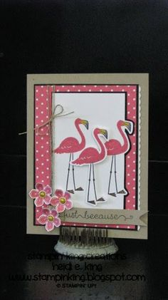 Creating Pretty Cards sketch using SU Flamingo Lingo Stamping Up Cards, Bird Cards, Scrapbook Cards, Scrapbooking, Pretty Cards, Card Sketches, Paper Cards, Cool Cards, Creative Cards