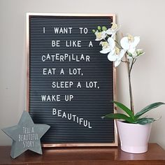 I really wish I was a caterpillar! Love my new letterboard bargain, from B & M Word Board, Quote Board, Message Board, Felt Letter Board, Felt Letters, Cool Words, Wise Words, Cute Quotes, Funny Quotes