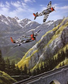 57 best military planes images on pinterest aviation art military american p 47 thunderbolt fighters fandeluxe Gallery