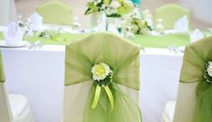 New wedding backdrop ceremony chairs Ideas Green Wedding Decorations, Pink Wedding Theme, Wedding Themes, Wedding Sash, Wedding Flowers, Wedding Ceremony Chairs, Wedding Backdrops, Lime Green Weddings, Pink And Green