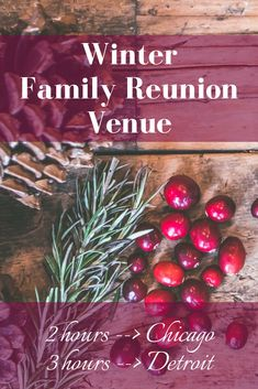 Michigan winter family reunion venue near Chicago & Detroit. Get the whole family together in the charming small town, full of winter fun for the whole family. Perfect getaway for groups of Hops Vine, Christmas Wreaths, Christmas Bulbs, Beach Town, Winter Fun, Detroit, Trip Advisor, Vines, Michigan